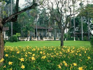 Fazenda Colonial de Café em SP